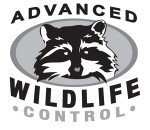 Animal Removal Services